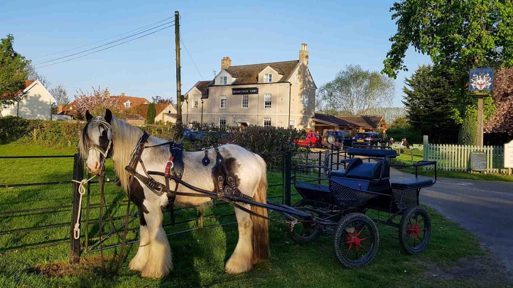 Bedingfeld Arms Luxury B&B Oxburgh Horse